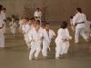2012-07-01-fete-metz-judo-0023