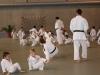 2012-07-01-fete-metz-judo-0026