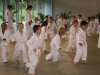 2012-07-01-fete-metz-judo-0027