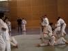 2012-07-01-fete-metz-judo-0036